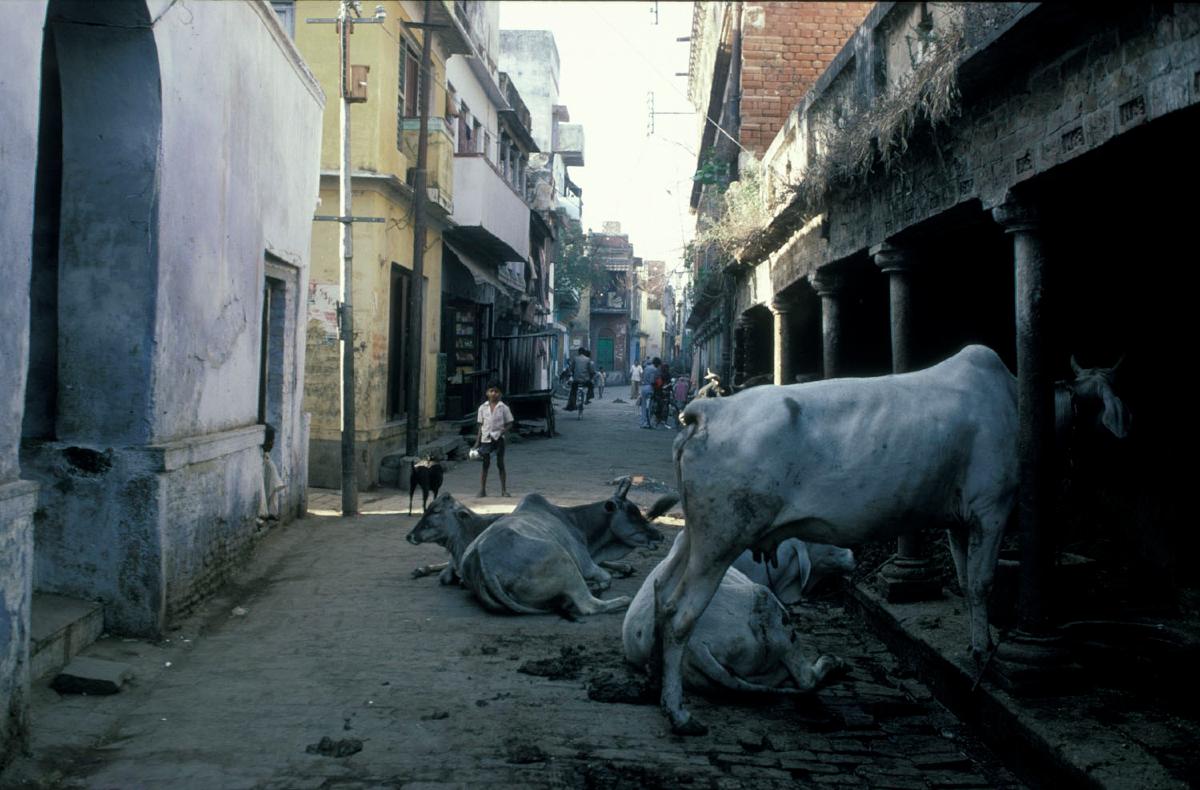 india-benares-stad-2