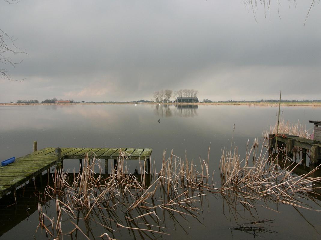 Nederland, Waterland 7 februari 2007Waterlandschap aan de Uitdammerdie in de winter, met afgestorven riet, boerenbedrijf en steigers.Foto: Marijke Bresser/Hollandse Hoogte