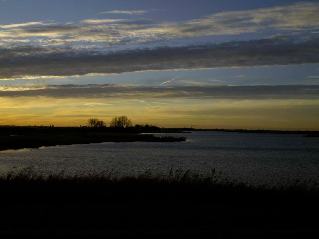 avondwandeling-1-jan-2013